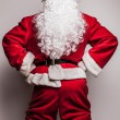 Santa Claus. - Foto de Stock  