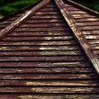 Wooden shingles on old roof in park. - Stock Photo