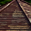 Wooden shingles on old roof in park. — Stock Photo