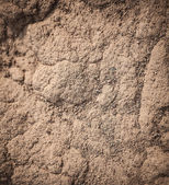 Dry sand background. — Stock Photo