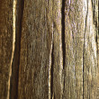 Old wood background. - Stock Photo