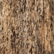 Old wooden background. - 图库照片
