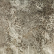 Old stone texture. Background photo. — Stockfoto