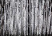 竹の背景. — ストック写真
