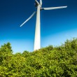 Wind turbine on the blue sky — Stock Photo