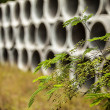 Drainage pipes — Stock Photo