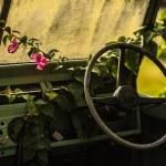 Off-road vehicle auto — Stock Photo #23598577