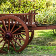 Old wooden cart — Stock Photo #23599255