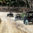 Jeeps on the road in jungle - Stock Photo