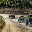Jeeps in jungle - Stock Photo