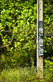 A power meters on electrical pole — ストック写真