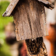 图库照片: Wooden birdhouse