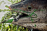 торчащие из руки манекена из уст деревянная рыба. — Стоковое фото