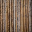 Stock Photo: Bamboo background.