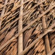 Thatch roof for traditional house in Asia. Background photo. - Stock fotografie