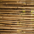 Bamboo background. — Stock Photo #23683207