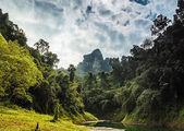 Amazing tropical landscape — Stock Photo