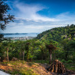 Amazing tropical landscape — Stock Photo #27434255