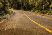 Strada tropicale — Foto Stock