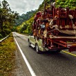 Pickup overloaded with house utensils. — Stock Photo #46669429