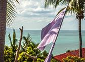 Tropical beach with flag — Stock Photo