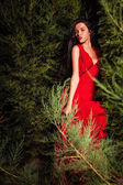 Beauty brunette women in red dress & hat pose at night park. — Stock Photo