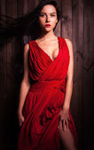 Lady in red pose on wooden background. Close-up photo. — ストック写真