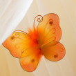 Orange butterflies — Stock Photo