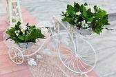 Wedding ceremony decoration — Stock Photo