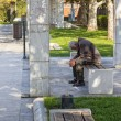 Old man sitting on bench — Stock Photo