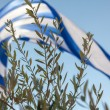 Royalty-Free Stock Photo: The biggest Greek flag ever built. 480 square meters and weighin
