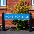 Stock Photo: Home for sale