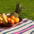 Fruit bowl — Stock fotografie
