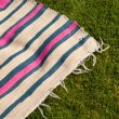 Stock Photo: Picnic blanket