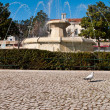 Municipal square fountain — Stock Photo