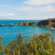 Carrick-a-Rede Rope Bridge — Stock Photo #26199325