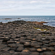 Giants Causeway — Stock Photo #26199447