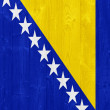 Bosnia and Herzegovina flag — Lizenzfreies Foto