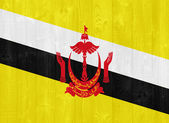 Brunei Darussalam flag — Stock Photo
