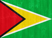 Guyana flag — Stock Photo