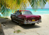 Cuba Beach classic car and palms — Stock Photo