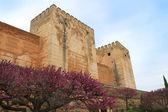 Alcazaba, granada spanien — Stockfoto