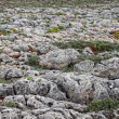 Stock Photo: Roughy rocky terrain in Sagres, Portugal