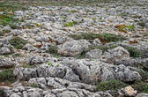 Roughy rocky terrain in Sagres, Portugal — Stock Photo