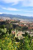 Granada rooftops — Stock Photo