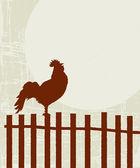 Carta di gallo retrò — Vettoriale Stock