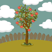 Apple tree illustration — Stock Vector