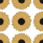 Sunflower pattern design — Stock Vector