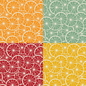 Citrus pattern collection — Stock Vector