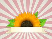 Banner de verano — Vector de stock